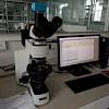 显微镜炭黑粒径检测,管材炭黑分散度检测方案